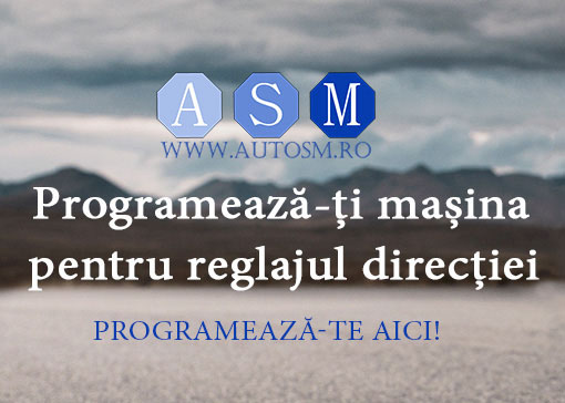 AutoSM - Reglaj directie